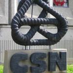 csn350-150x150